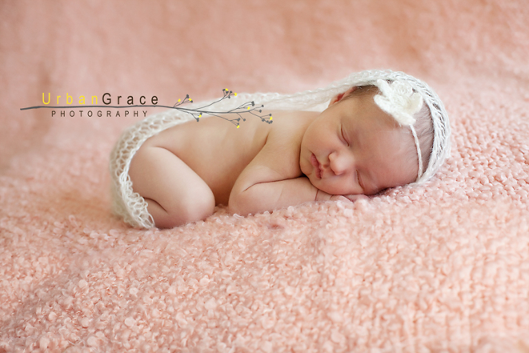 10 day old newborn- atlanta baby-family photographer